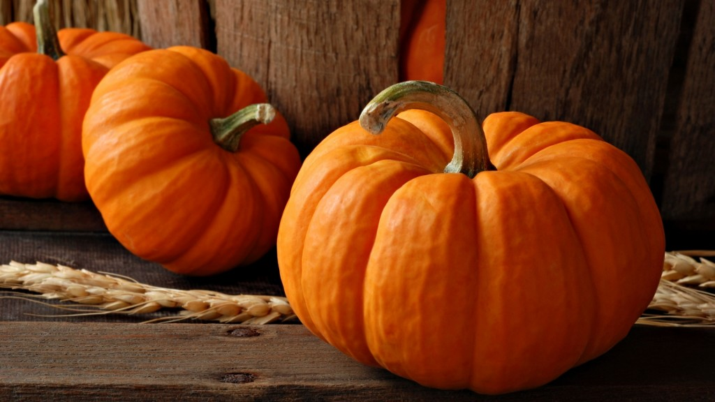 pumpkin-wallpaper-25769-26453-hd-wallpapers