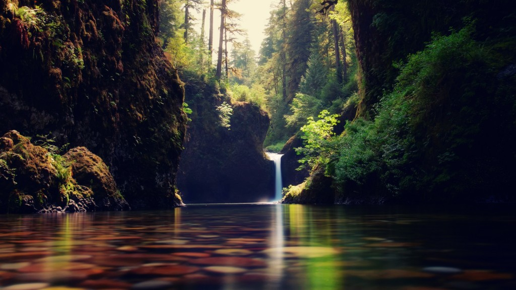 amazing-forest-waterfall-34065-34834-hd-wallpapers