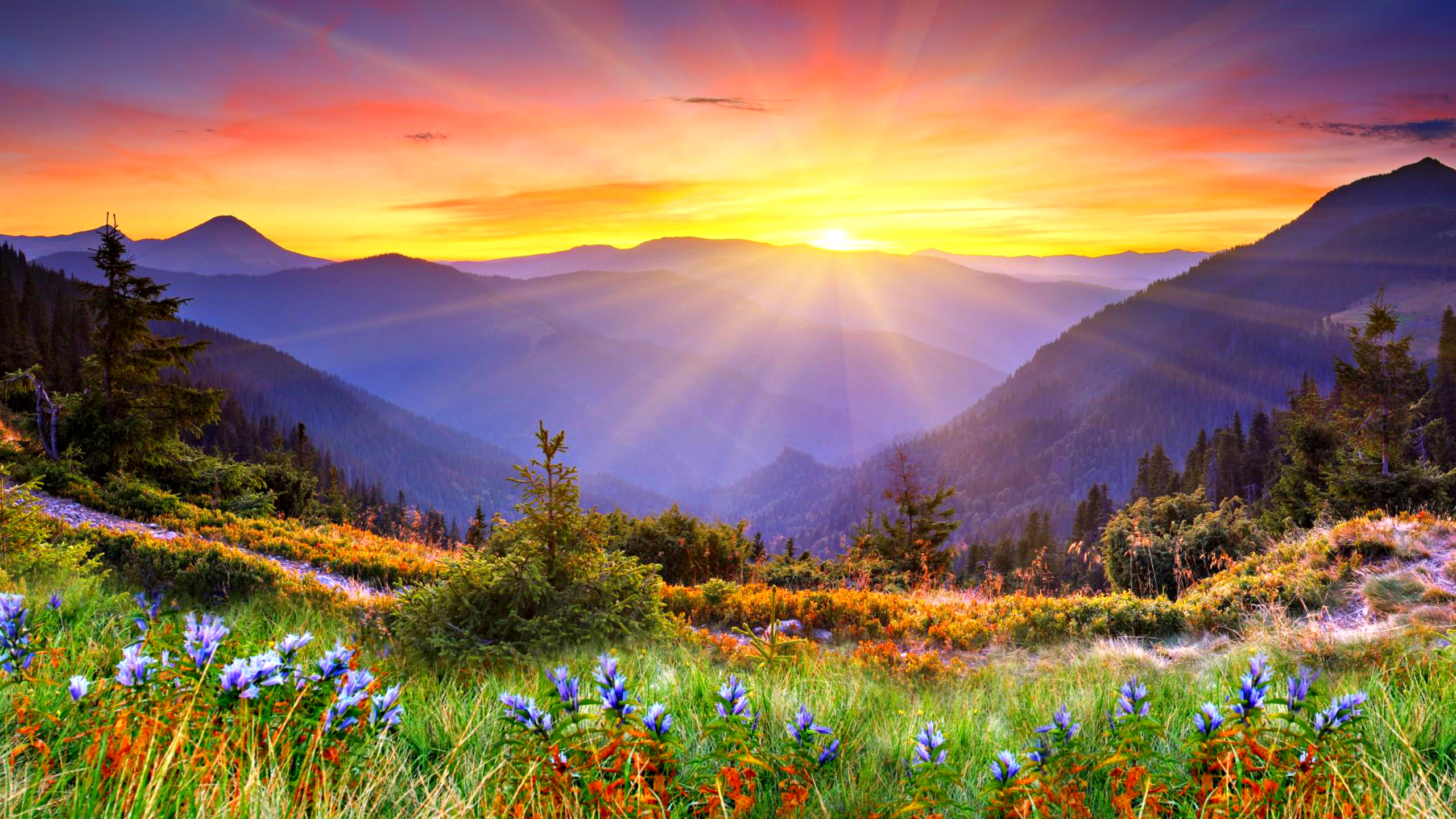beautiful mountains sunrise wallpaper - photo #15