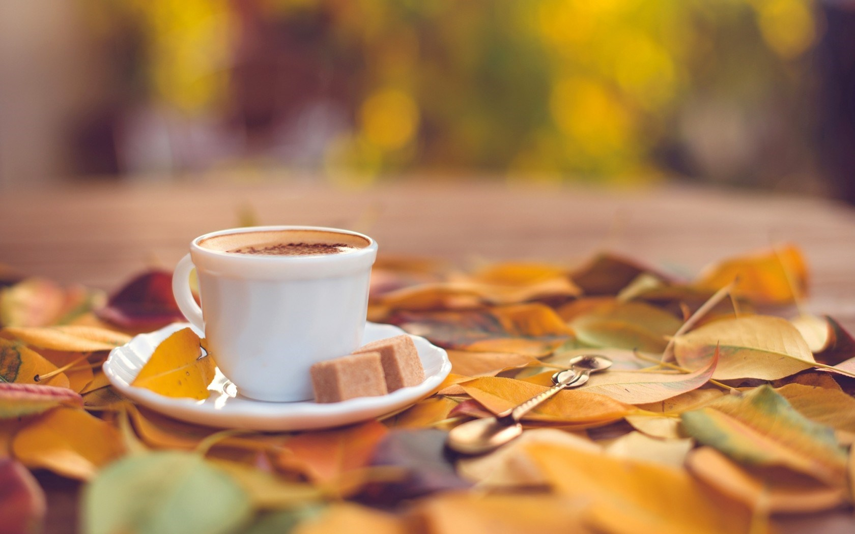 20 Lovely Hd Coffee Wallpapers Hdwallsource Com