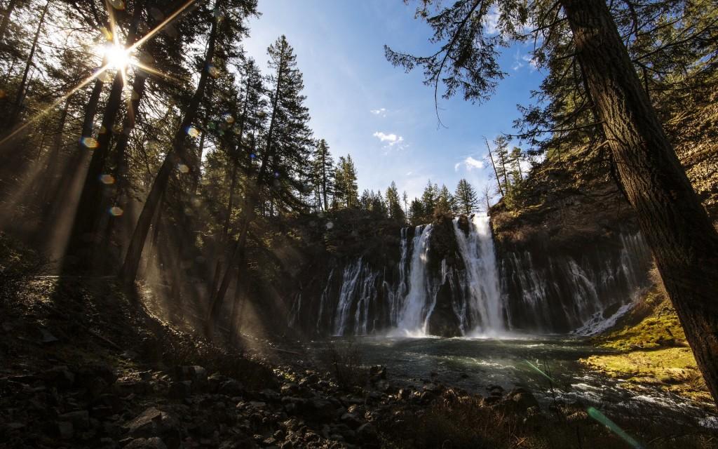 Wonderful Forest Waterfall Wide Desktop Background