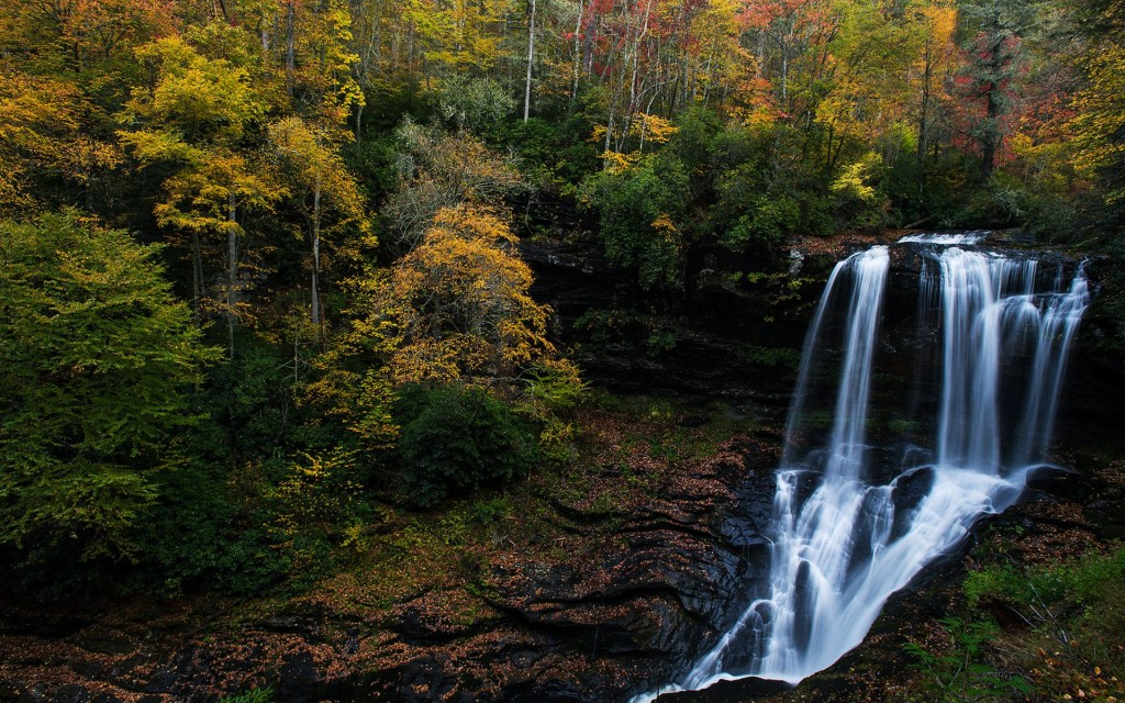 forest-waterfall-34076-34845-hd-wallpapers
