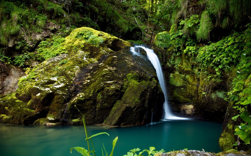 forest-waterfall-34080-34849-hd-wallpapers