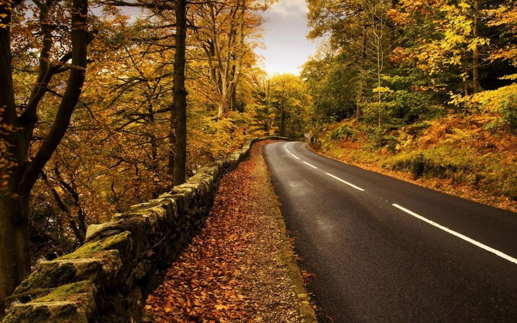 gorgeous mountain road wallpapers