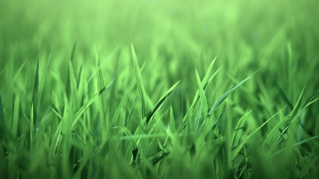 grass-backgrounds-18859-19339-hd-wallpapers