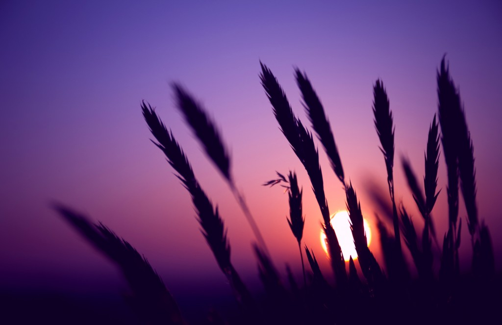 purple-sunset-23193-23843-hd-wallpapers