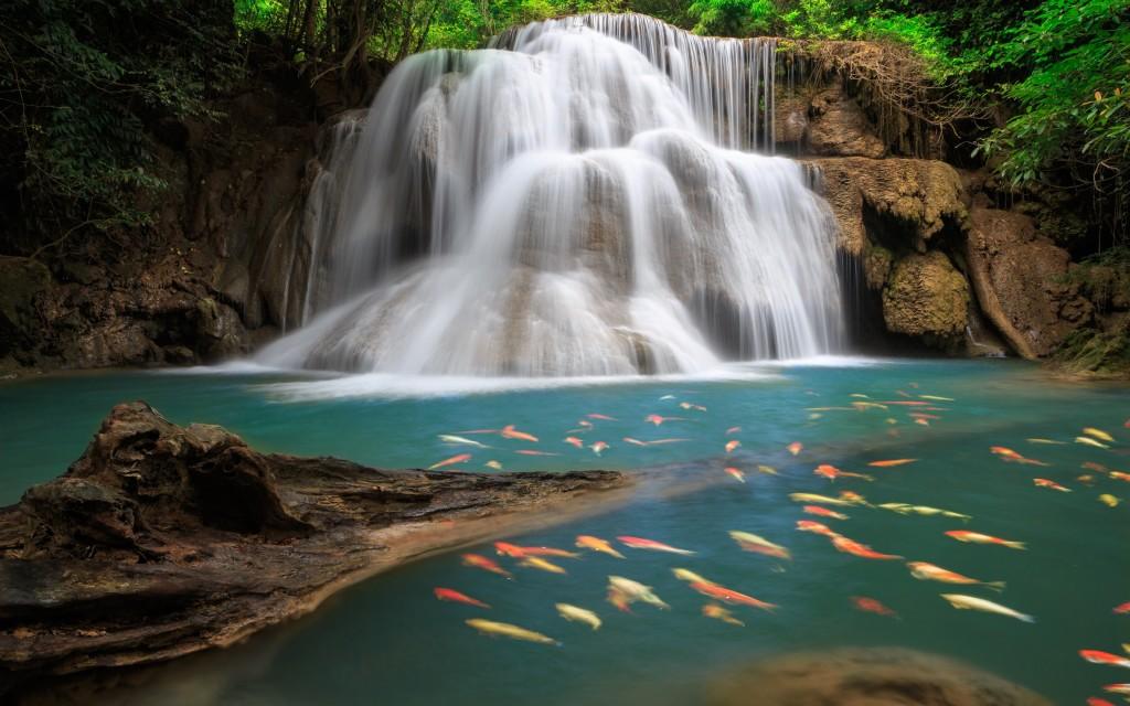 stunning-waterfall-wallpaper-19624-20120-hd-wallpapers