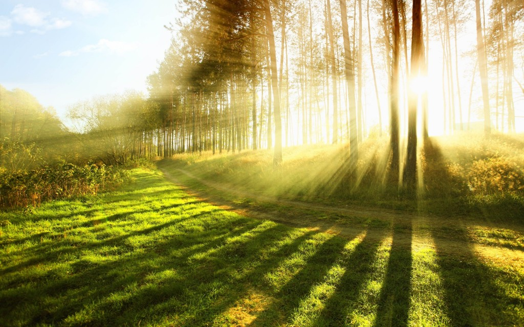 sunlight-wallpaper-hd-36071-36895-hd-wallpapers
