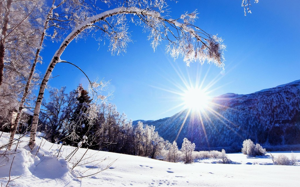 winter-wallpaper-17505-18064-hd-wallpapers