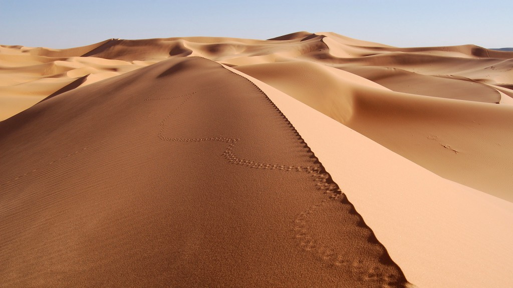desert-wallpaper-16498-17036-hd-wallpapers