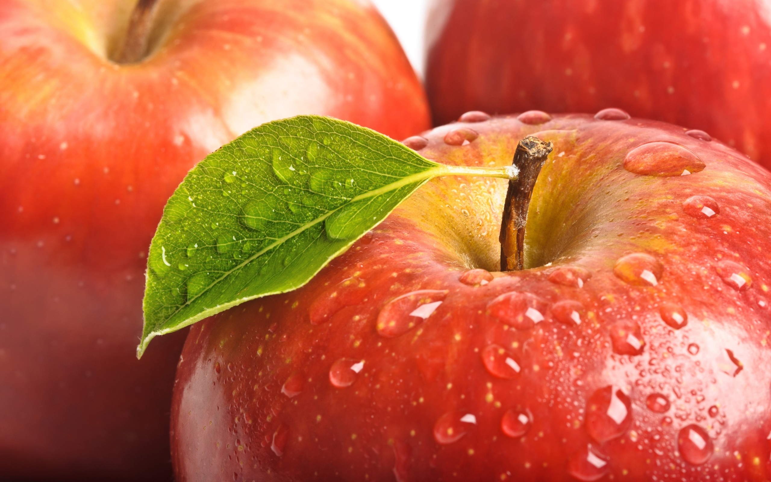 Apple Fruit - Wallpapers-HD Wallpapers-Laptop Wallpapers | Fruits ...
