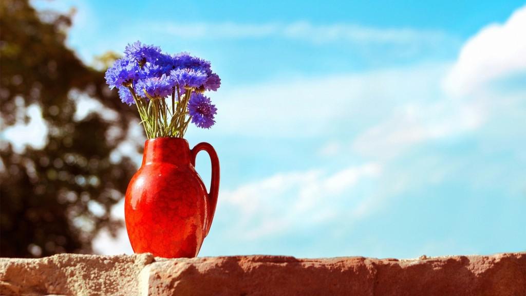 pretty-vase-wallpaper-39292-40197-hd-wallpapers