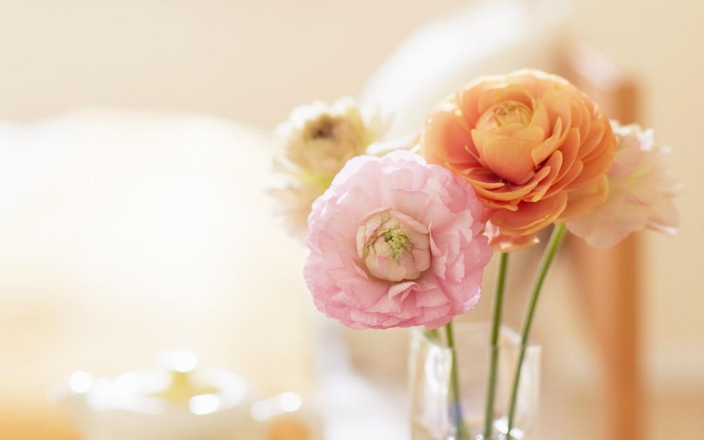 vase-wallpaper-39290-40195-hd-wallpapers