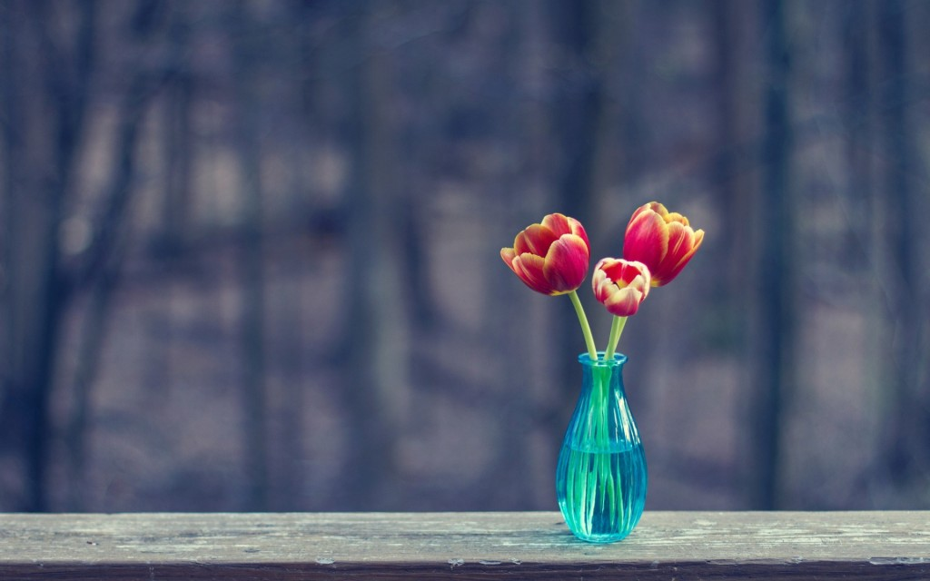 vase-wallpaper-39297-40202-hd-wallpapers