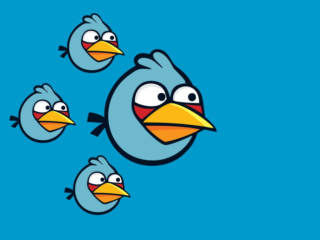 blue-angry-bird-wallpaper-30406-31126-hd-wallpapers