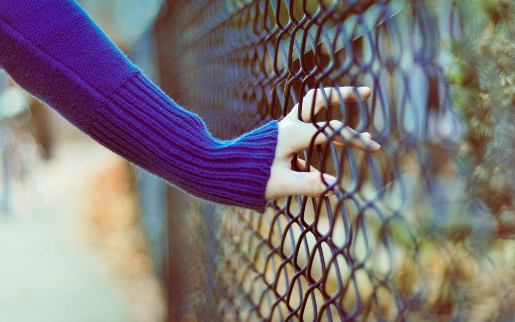 cute-fence-wallpaper-31686-32420-hd-wallpapers