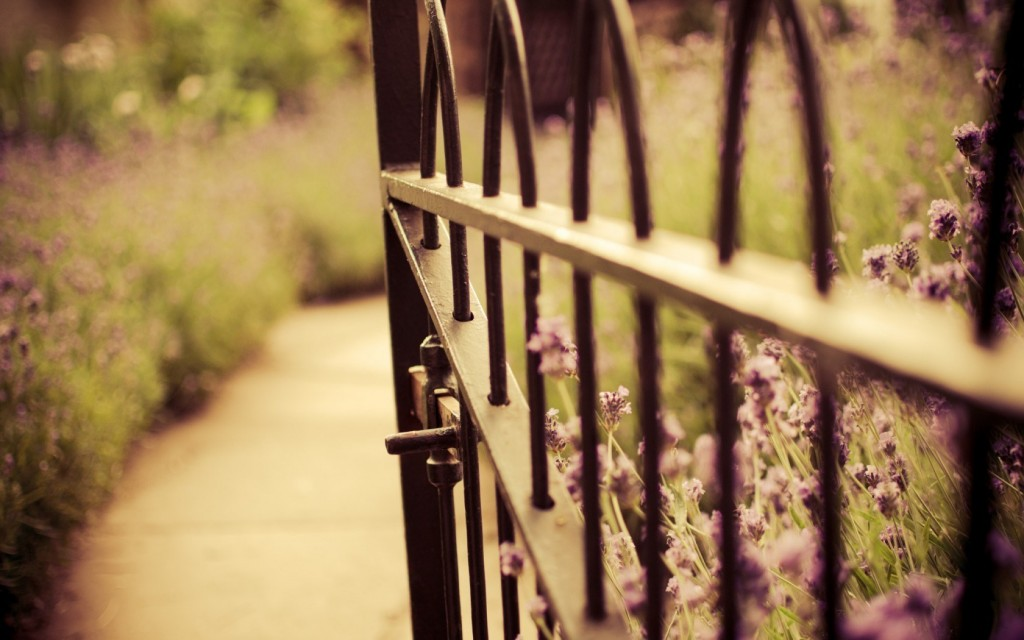 pretty-fence-wallpaper-44956-46109-hd-wallpapers