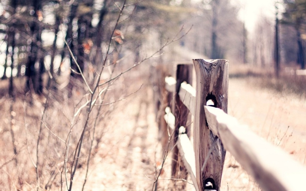 wood-fence-wallpaper-31767-32501-hd-wallpapers
