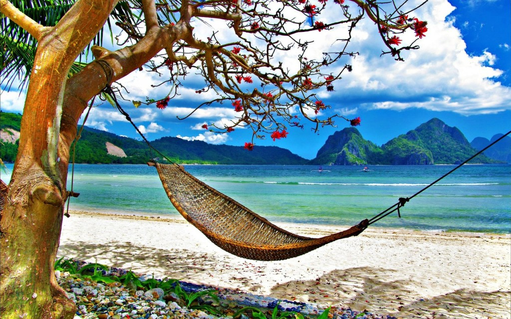 beach-hammock-desktop-wallpaper-49213-50876-hd-wallpapers