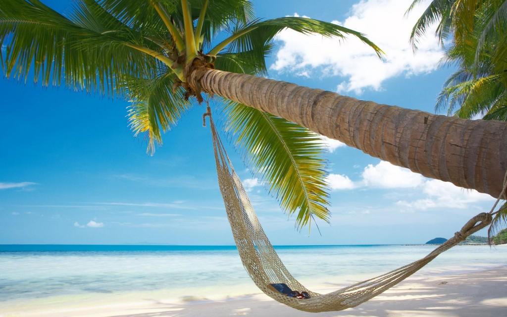 beach-hammock-wallpaper-49214-50875-hd-wallpapers