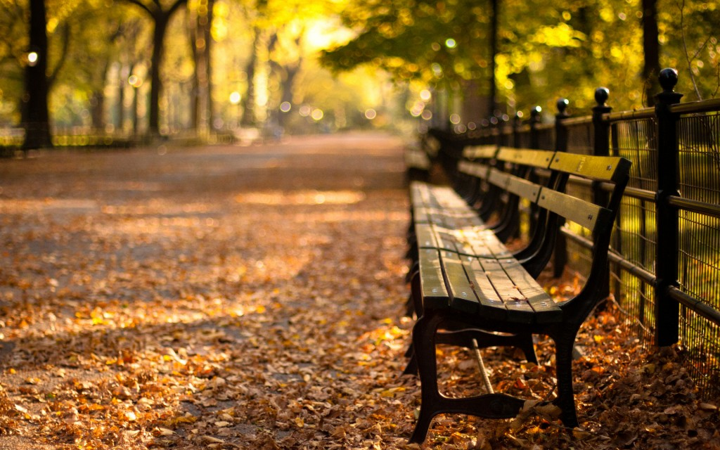 bench-31633-32368-hd-wallpapers