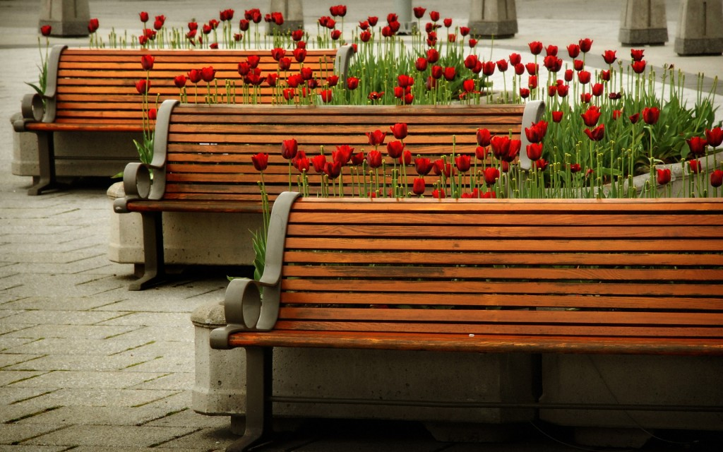 benches-31635-32370-hd-wallpapers