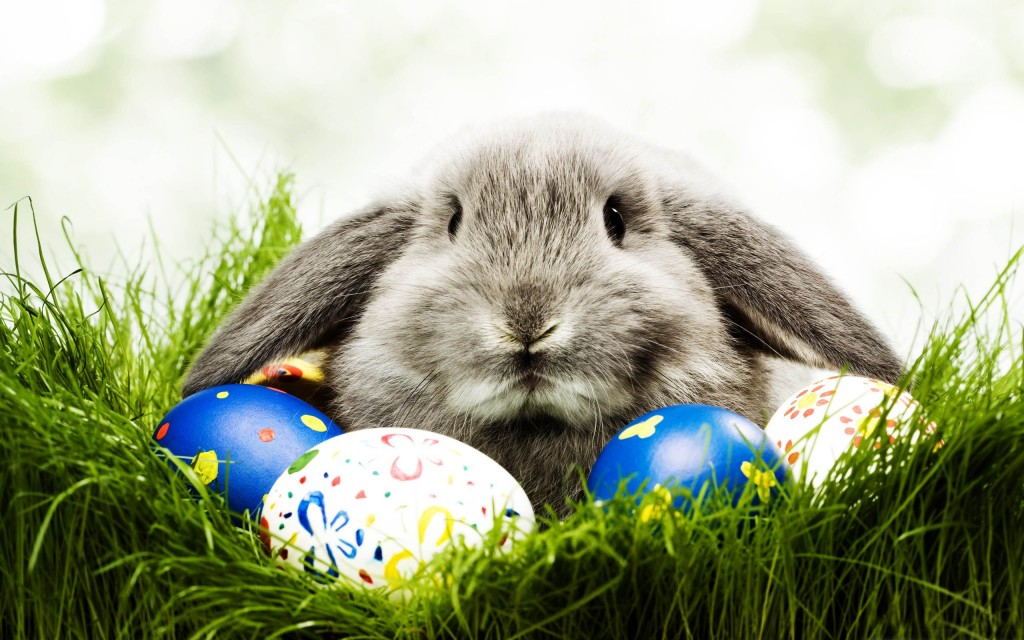 easter-pictures-26844-27560-hd-wallpapers