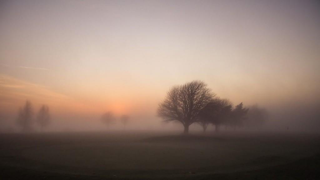 fog-wallpaper-36643-37478-hd-wallpapers