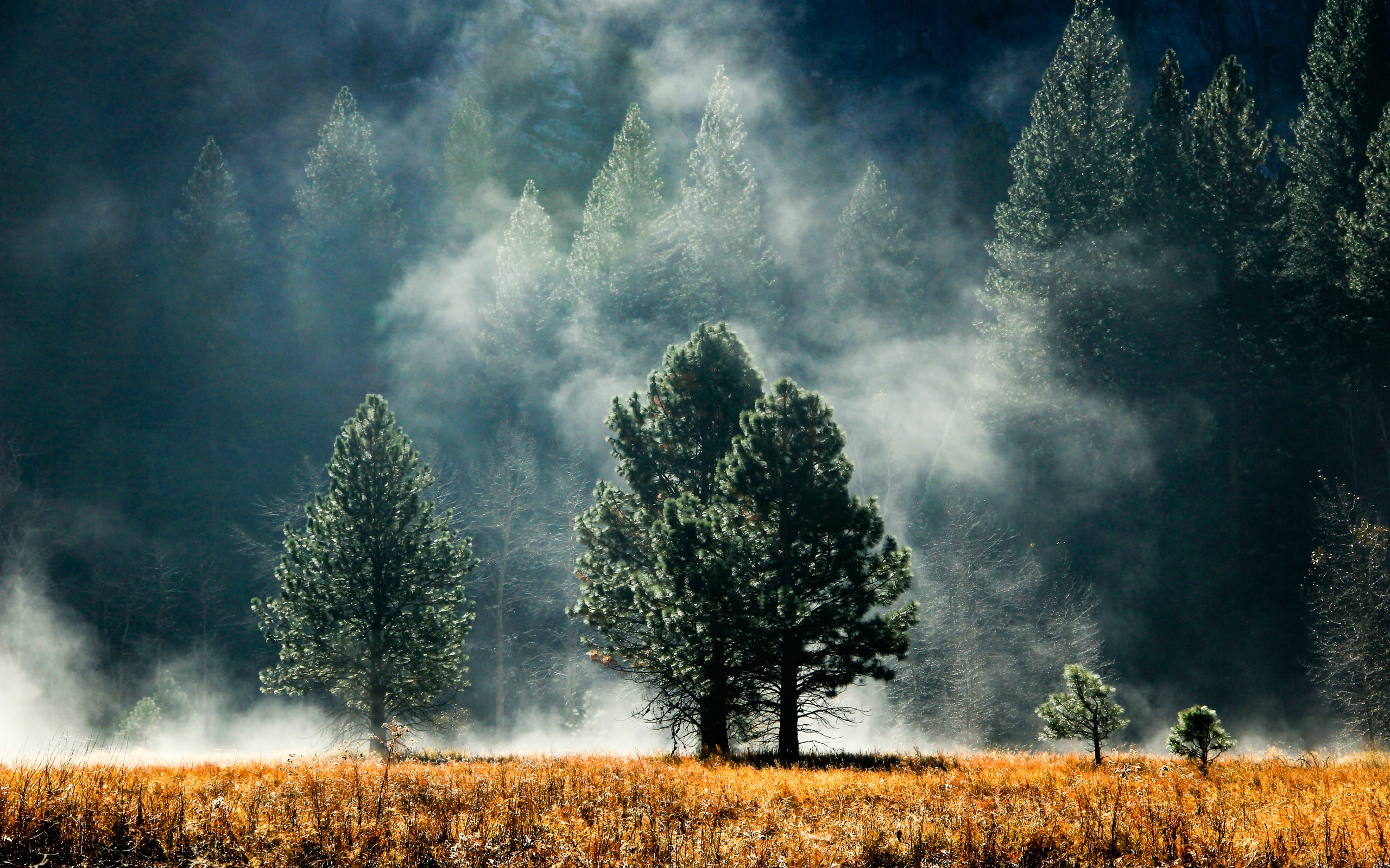 25 Excellent HD Fog Wallpapers