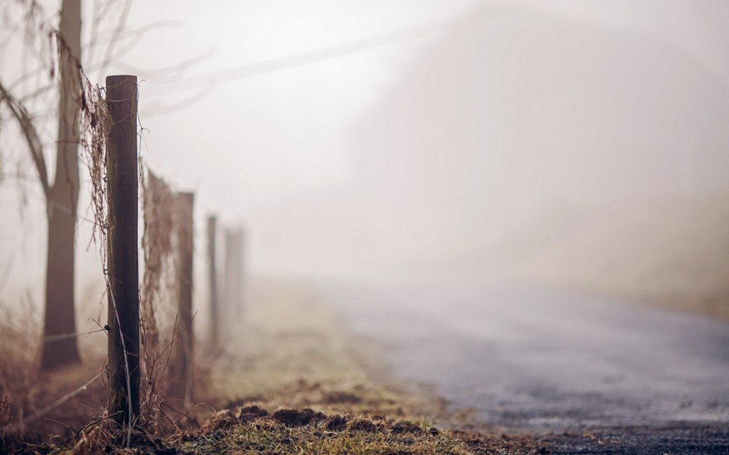 foggy-nature-fence-wallpaper-44973-46138-hd-wallpapers