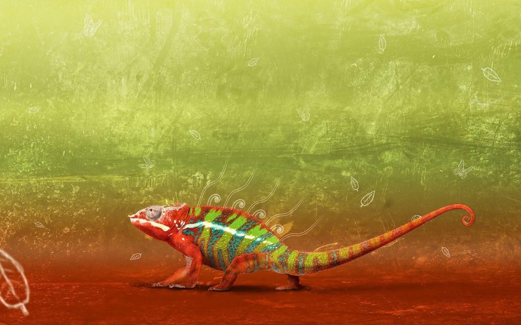 free-chameleon-wallpaper-23632-24286-hd-wallpapers