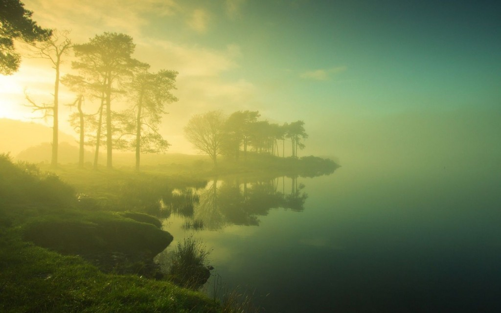 mist-background-27420-28137-hd-wallpapers