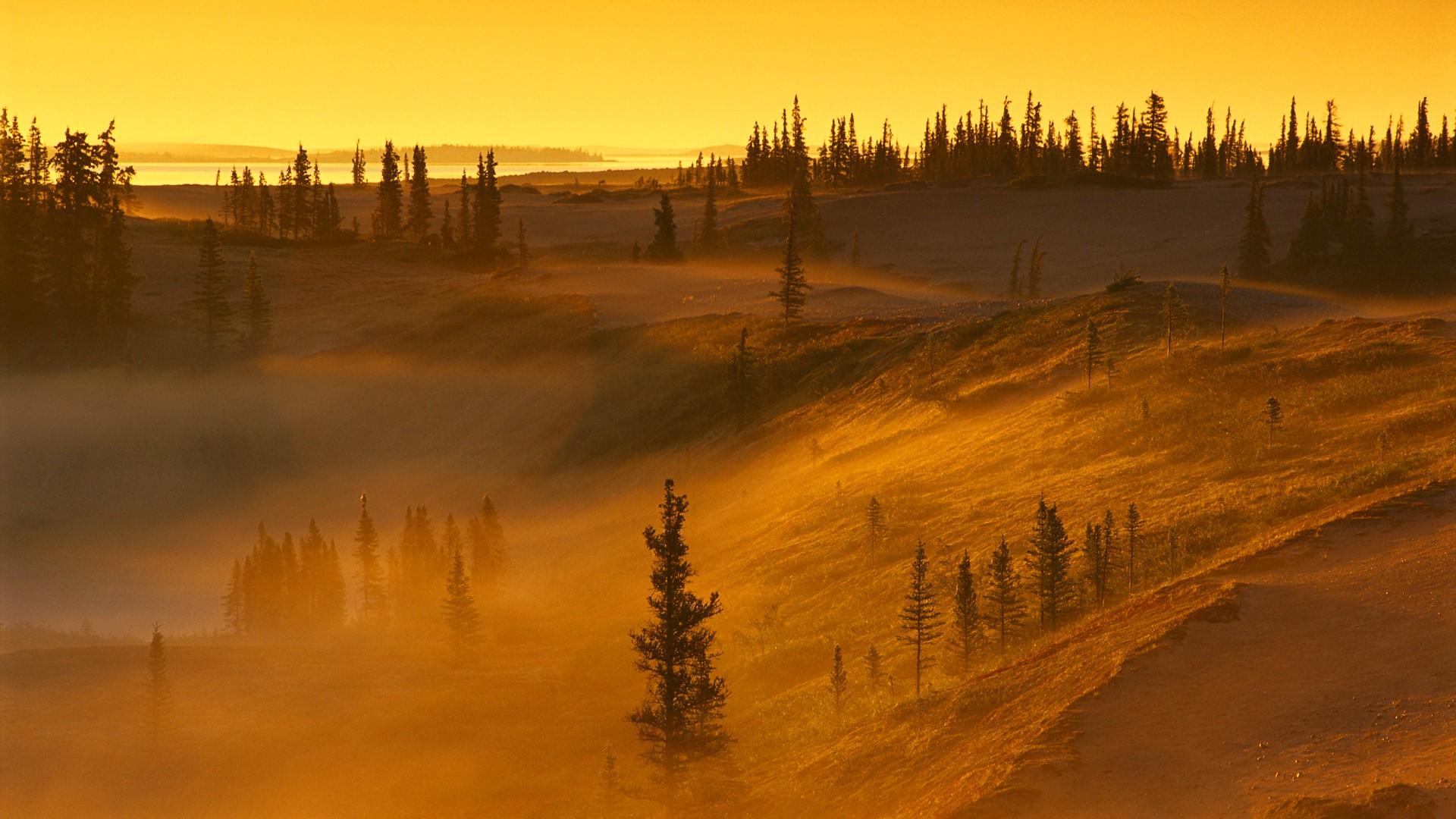 18 Stunning Hd Mist Wallpapers Hdwallsource Com