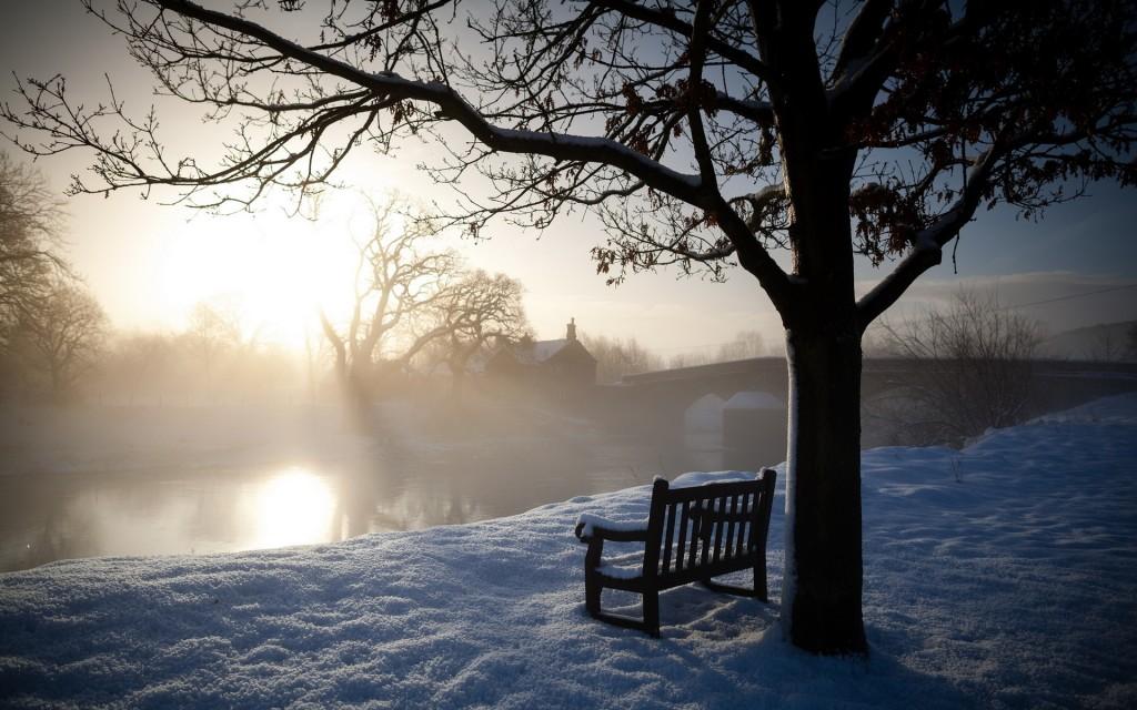 stunning-nature-bench-wallpaper-44618-45748-hd-wallpapers