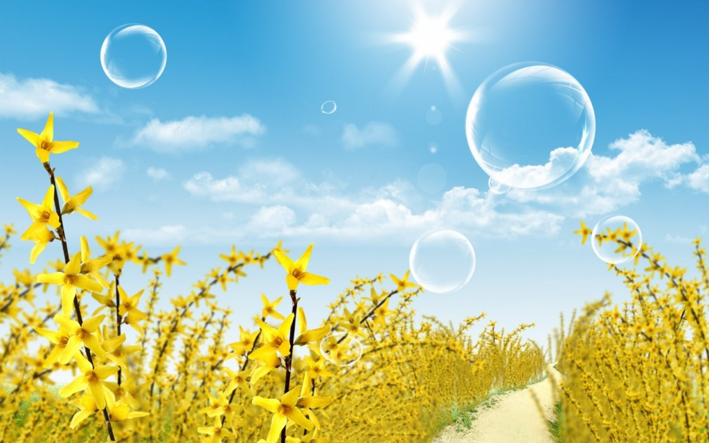 summer-wallpaper-11706-12083-hd-wallpapers