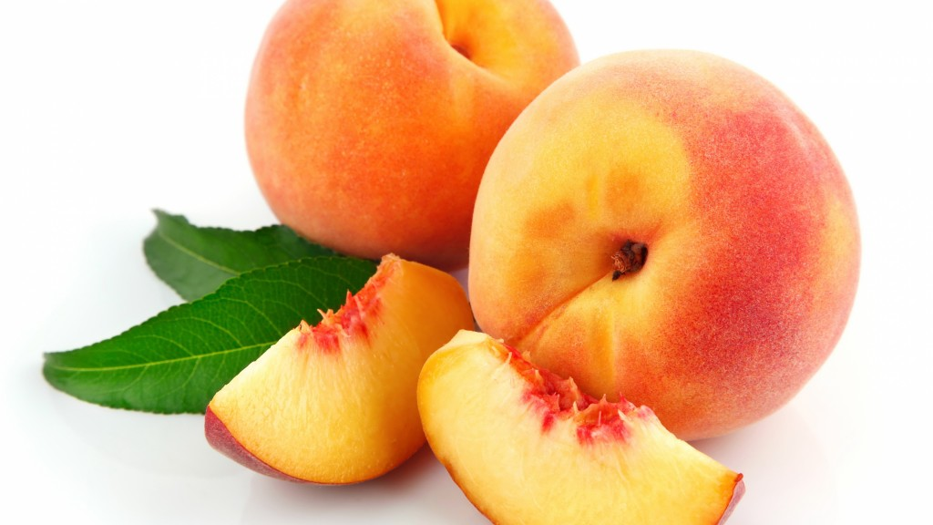 apricot-fruit-widescreen-wallpaper-49866-51547-hd-wallpapers