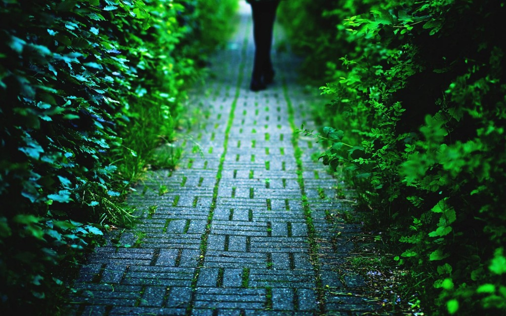 beautiful-pavement-wallpaper-38801-39689-hd-wallpapers