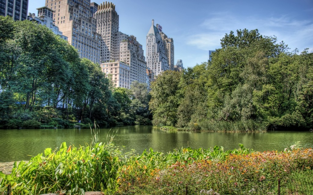 central-park-nyc-22024-22580-hd-wallpapers