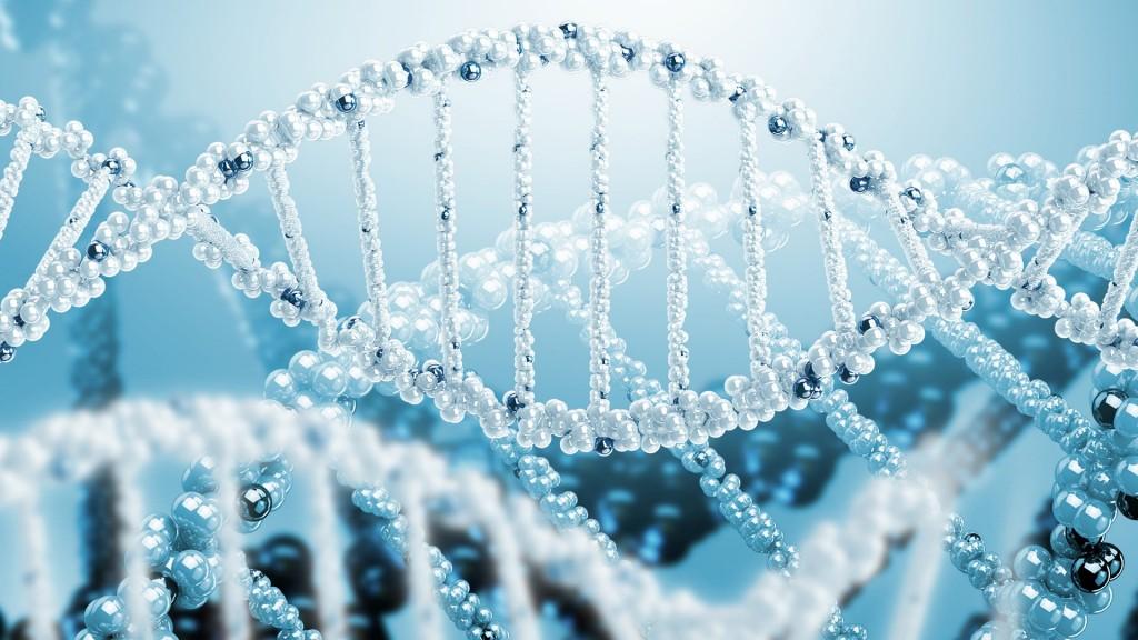 genetic-wallpaper-hd-47248-48768-hd-wallpapers