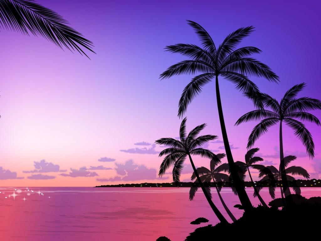palm-tree-vector-art-wallpaper-49770-51449-hd-wallpapers