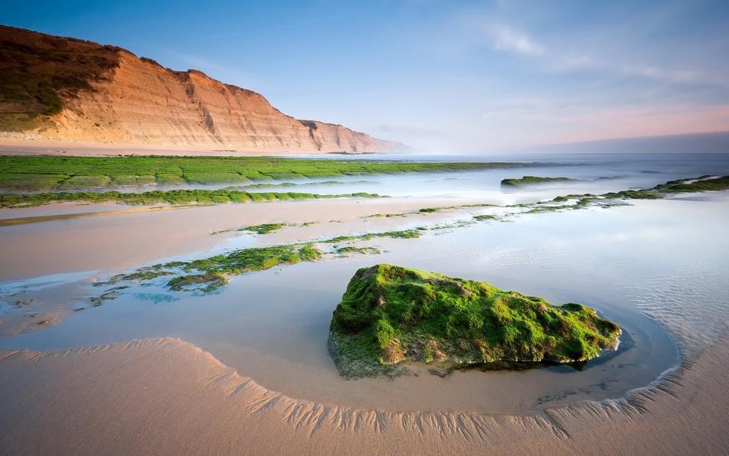 wonderful-oasis-landscape-wallpaper-46245-47583-hd-wallpapers