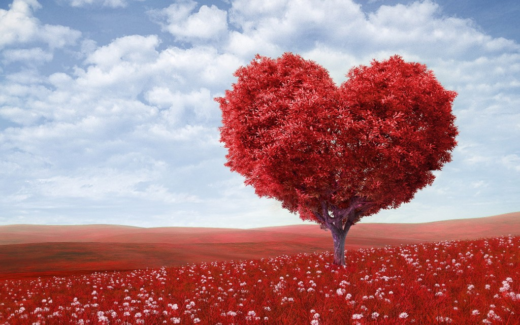 love-tree-widescreen-wallpaper-50424-52115-hd-wallpapers