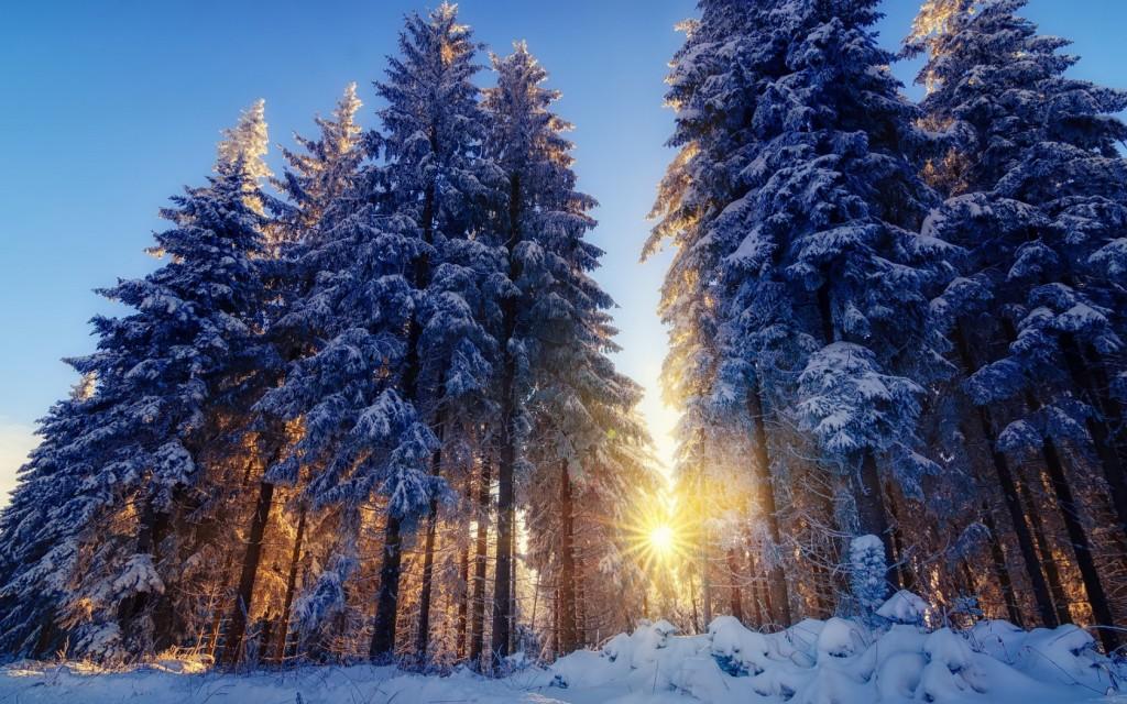 winter sunbeam computer wallpapers