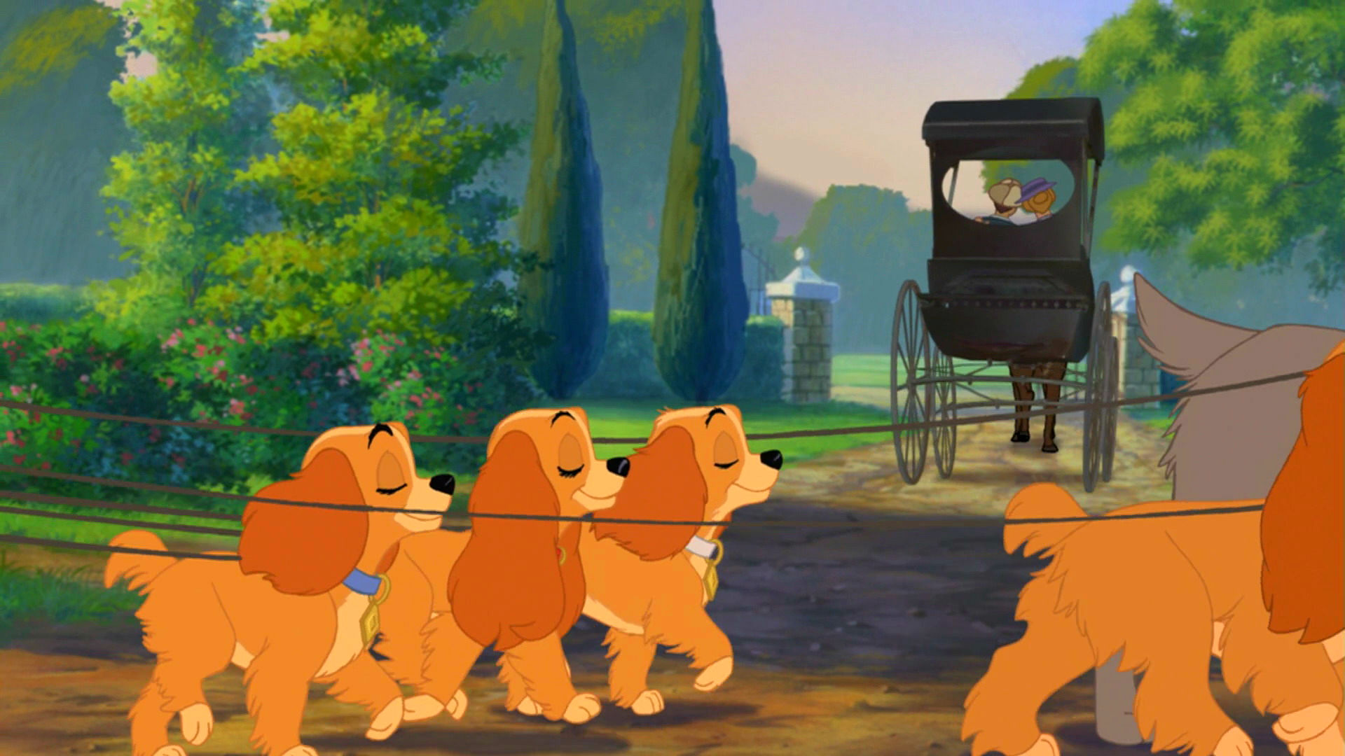 11 hd lady and the tramp wallpapers hdwallsourcecom