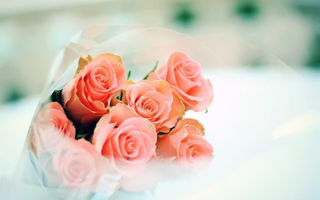 rose flower bouquet computer wallpapers