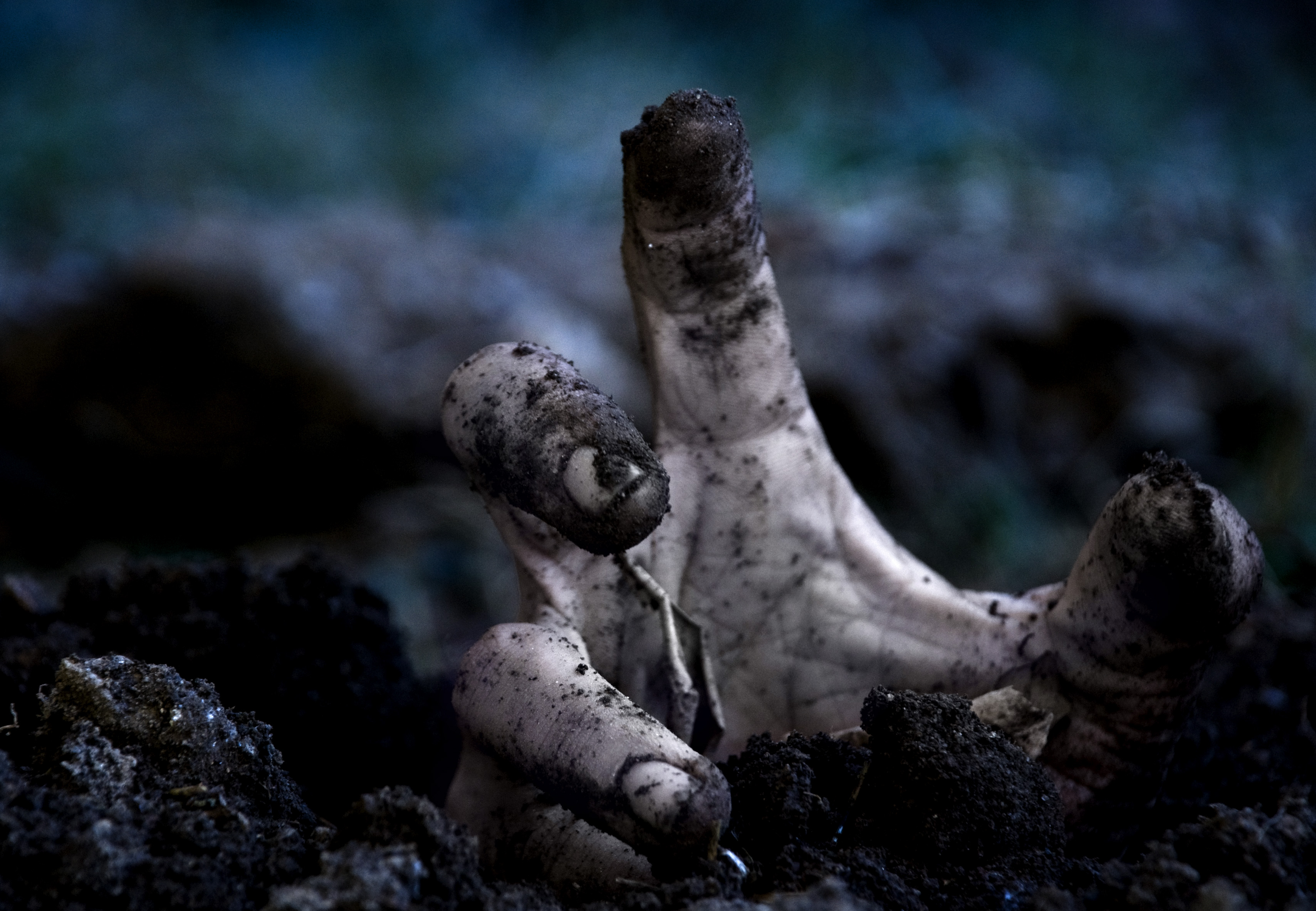 18 Scary HD Zombie Wallpapers