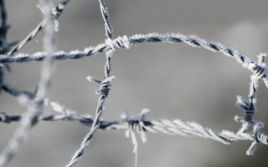 frozen barbed wire fence wallpapers