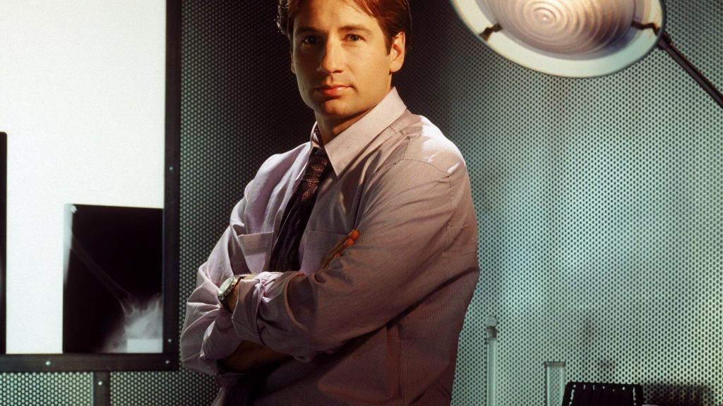 david duchovny desktop wallpapers