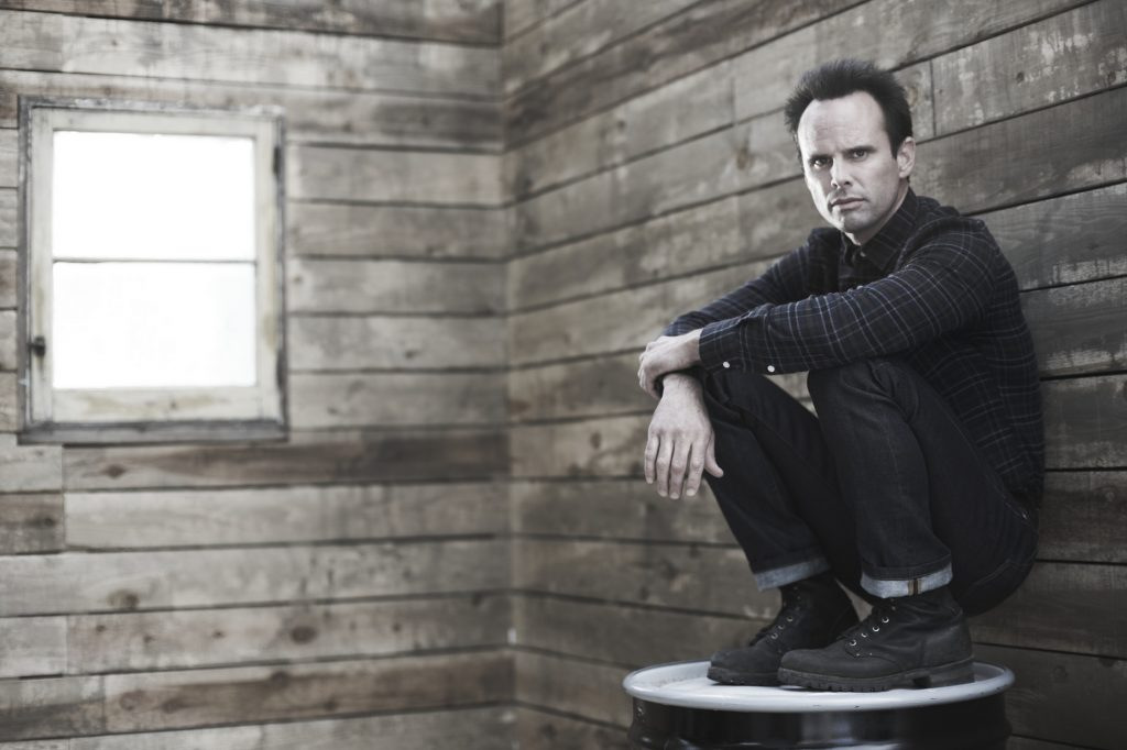 walton goggins desktop wallpapers