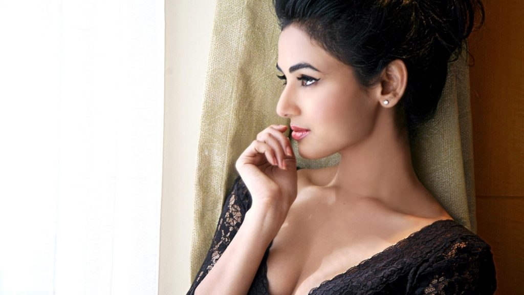 Sonal Chauhan Wallpapers